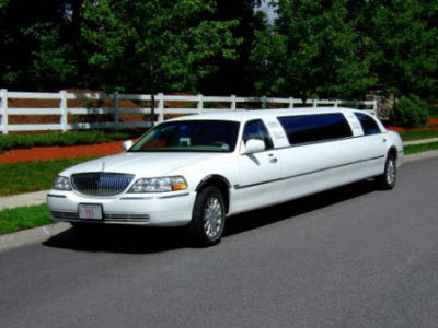 Full Day Limousine Tour