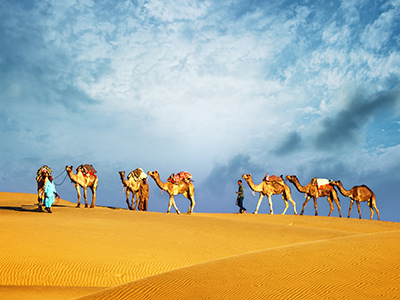 Camel-riding-morning-safari