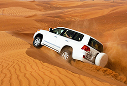 City Tour and Desert Safari