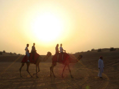 Sunset Camel Riding