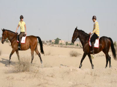 Horse riding in dubai desert